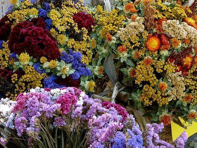 tørrede blomster